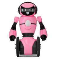 Інтерактивна іграшка WL Toys Робот на радиоуправлении F1 с гиростабилизацией ( Фото