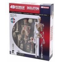 Пазл 4D Master Объемная анатомическая модель Master Скелет челове Фото
