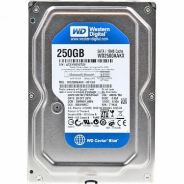 "Жесткий диск 3.5"" 250Gb WD (WD2500AAKX) - фото 1"