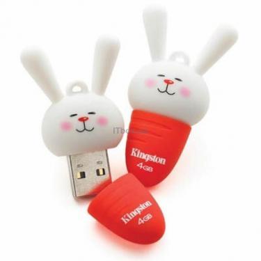 USB флеш накопичувач DataTraveler Banny Kingston (DTCNY11/4GB) - фото 1